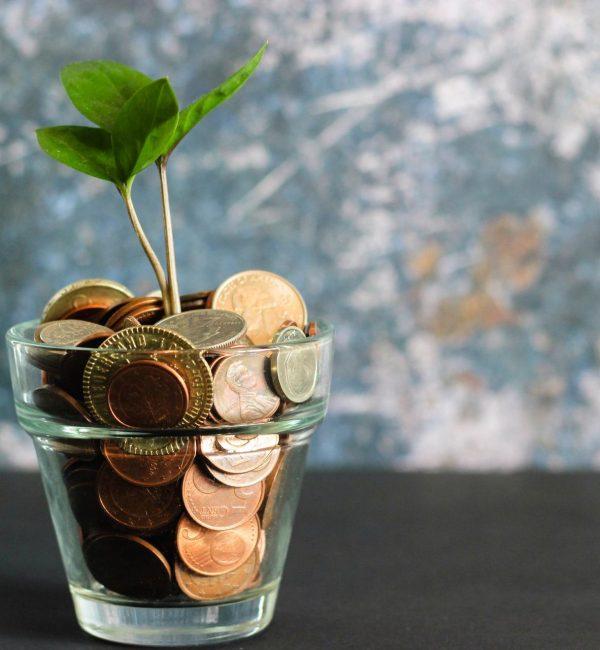 Aumentare i guadagni